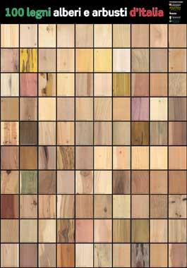 Falegname fai da te guida all 39 acquisto ed alla lavorazione del legno - Tipi di legno per mobili ...