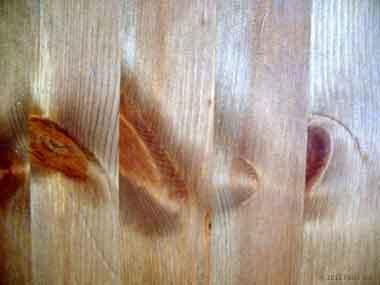 Lavorare Il Legno Grezzo : Falegname fai da te guida all acquisto ed alla lavorazione del legno