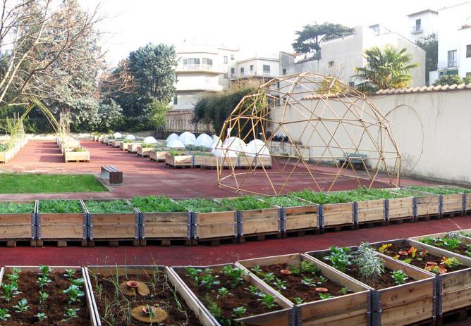 Orto sul balcone sul terrazzo in casa in giardino for Cassoni per orto rialzato