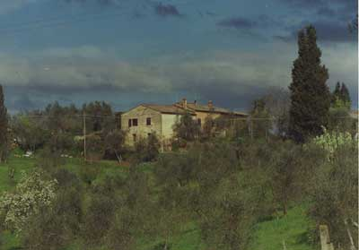 Country House Holiday - Farm Holiday Cottage - Famrstay. Sienna, Tuscany